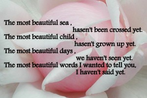 Cute_Sayings_white_rose_center